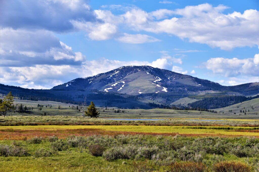 A photo of Montana.